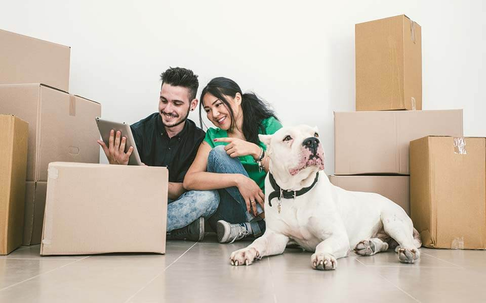 Couple with dog moving house